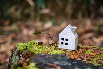 自然環境とミニチュアの家