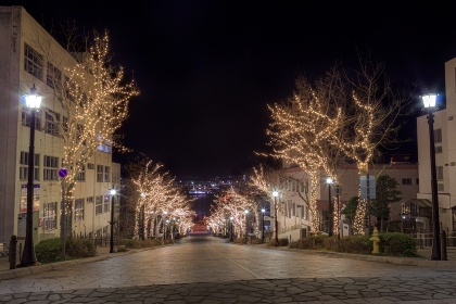 北海道・函館市 冬の八幡坂イルミネーションの風景