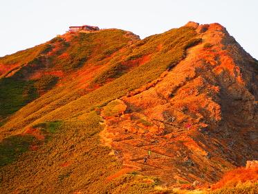 北アルプス爺ヶ岳の紅葉