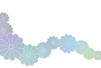 ハガキ 菊帯寒色グラデ イラスト 1