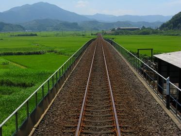 列車の前面展望(単線、非電化区間)、田んぼが広がる