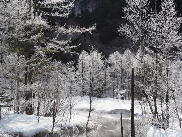 冬の上高地、田代池の霧氷