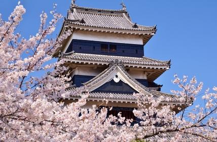 春の彩り 国宝 松本城