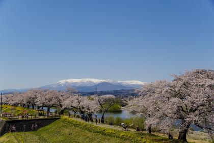 一目千本桜と残雪の蔵王山