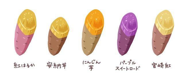 いろいろな種類の焼き芋のイラスト