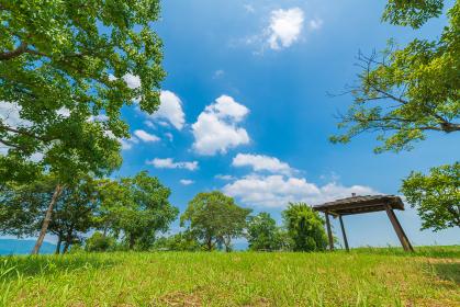 夏の青空と白い雲と緑