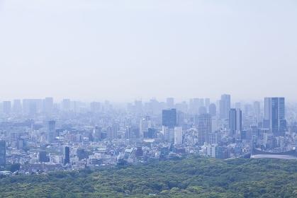 都庁展望台から見た眺め