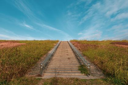 冬の青空と階段