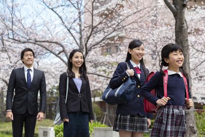 桜並木の下に立つ家族