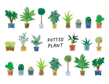 カジュアルなタッチ シンプルなグリーンの鉢植えのイラストセット