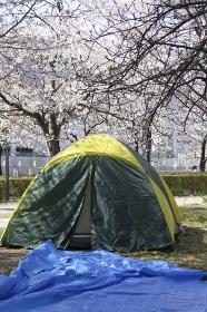 花見の場所取りのテント