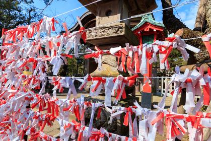 江島神社奥津宮のおみくじ掛け