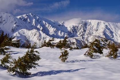 北アルプス 白馬連峰 冬景色
