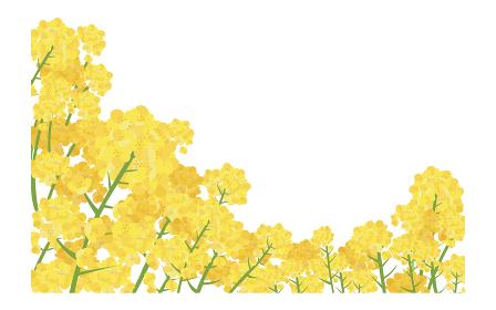 イラスト素材 菜の花 なのはな ナノハナ 花畑 横構図 ベクター