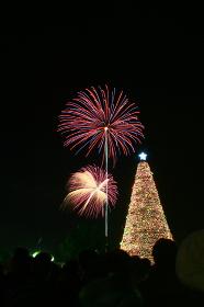 クリスマスイブの花火大会。クリスマスツリーのイルミネーションと打ち上げ花火。クリスマスデート。