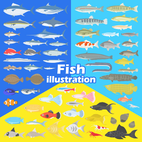 魚のイラストセット