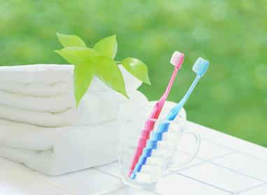 タオルとコップの歯ブラシ