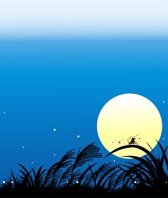 十五夜の月とすすきの秋の風景