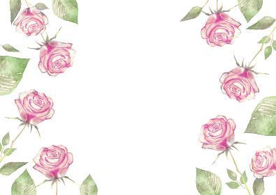 薔薇 フレーム ピンク 水彩 イラスト