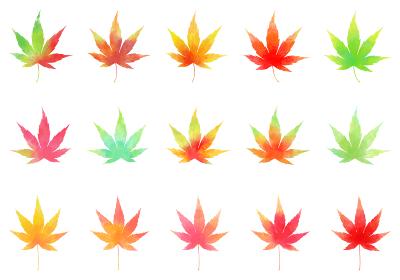 秋、水彩風色とりどりのもみじセット