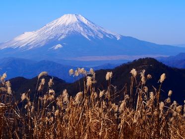 丹沢・蛭ガ岳からの富士山