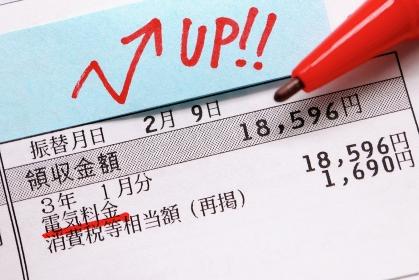 電力会社からの電気料金領収書, 電気代の増加