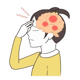 脳の断面図 頭痛 女の子