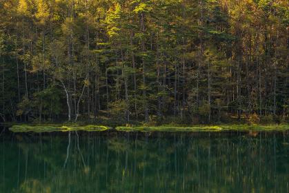 秋の朝の御射鹿池