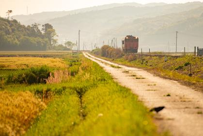 田園風景を走るオレンジ色の列車