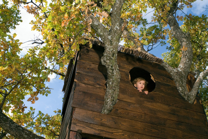 2-3 years old boy in a tree house