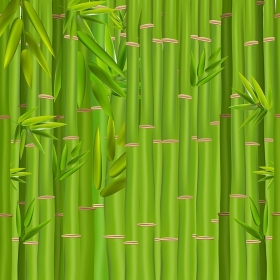 Colorful Stems and Bamboo Leaves Background. Vector Illustration. EPS10. 2015-07-15-06 [??N€?µ???±N€?°?·?????°????N‹??]
