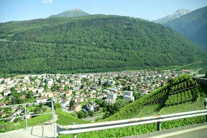 スイスワインの葡萄畑とマルティニーの街並み