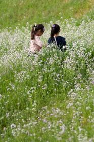 野原を歩く二人の女の子達