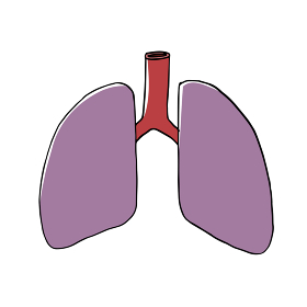 不健康な肺のイメージ