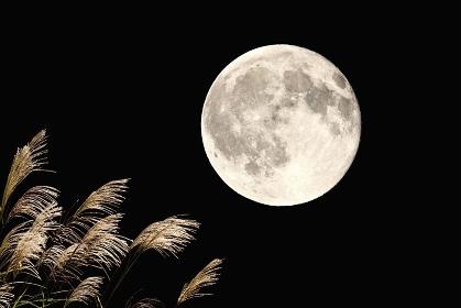 夜空 の画像 写真素材 ベクター画像 イメージマート