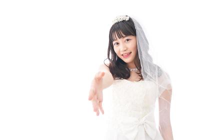 握手をするドレス姿の花嫁