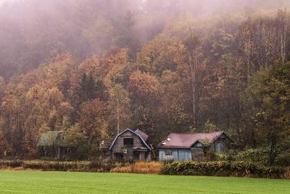 北海道・美瑛町 秋の紅葉と朝霧と納屋の風景