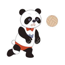 おもしろパンダ(バレーボール)