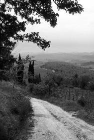 イタリア、トスカーナ地方の道