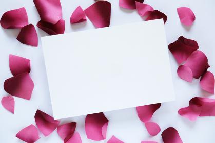 ピンクの花びらに囲まれたカード 7