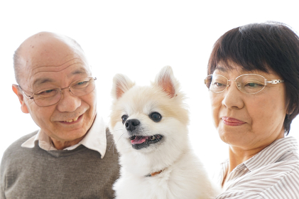 ペットを飼う高齢者夫婦