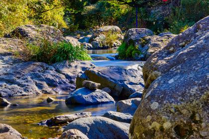 秋の美しい渓流と落葉【福岡県】