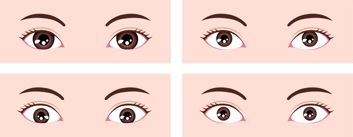 目・眼の種類 ベクターイラスト (三白眼・四白眼)