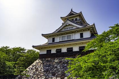 長浜城(長浜城歴史博物館)