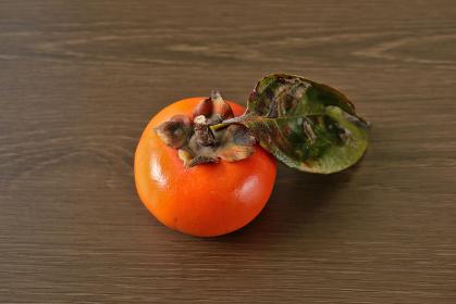 枝葉がついた柿 3