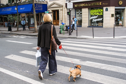 フランス・パリで犬の散歩をする人