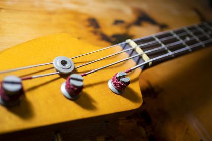 ベースのヘッド 楽器 3614