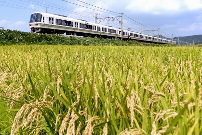 東海道線221系普通電車
