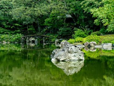 池のある、秋の日本の伝統的な庭園の風景