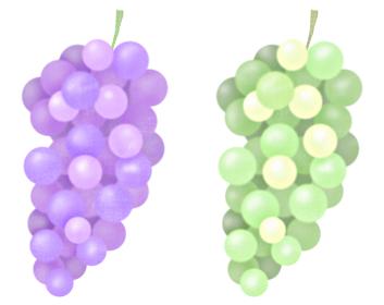 パープルの葡萄とグリーンのぶどうのイラスト 果実